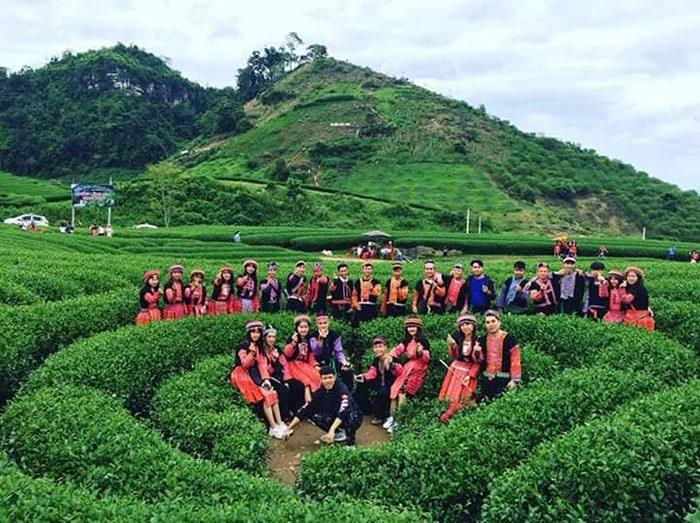Tour du lịch Mộc Châu – Team Building 2 ngày 1 đêm