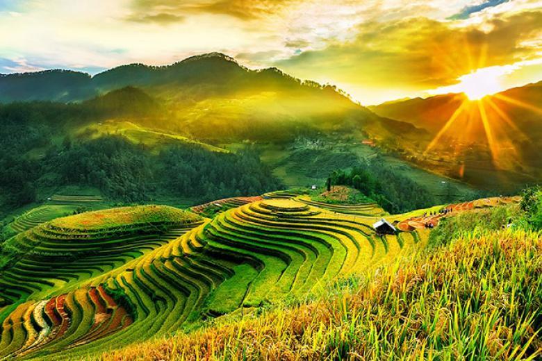NỘI ĐỊA KHUYẾN MẠI GIẢM 17%:DU LỊCH MÙ CANG CHẢI – BẢN LƯỚT – SAPA MÙA LÚA CHÍN CHINH PHỤC ĐỈNH FANSIFAN 3N/2Đ